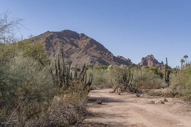 6248 E Palo Verde Lane, Paradise Valley, AZ 85253 (#6158513) :: Long Realty Company