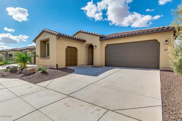 29086 N Sorrento Drive, Peoria, AZ 85383 (MLS #6158516) :: Brett Tanner Home Selling Team