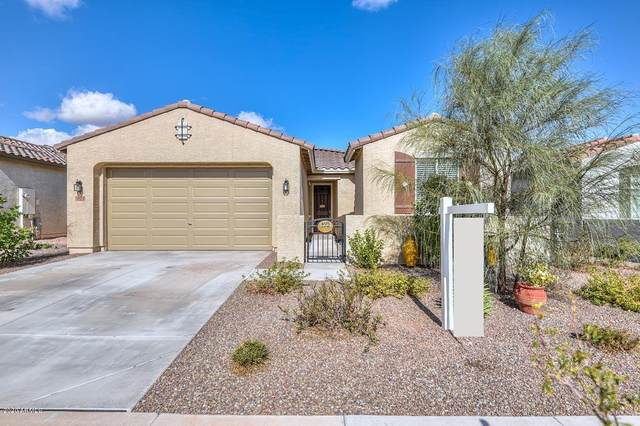 18172 W Carlota Lane, Surprise, AZ 85387 (MLS #6158542) :: Power Realty Group Model Home Center