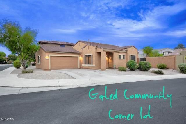 2852 E Fremont Road, Phoenix, AZ 85042 (MLS #6158543) :: CANAM Realty Group