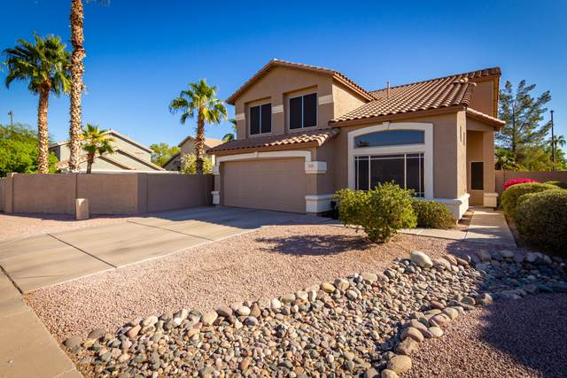 703 S Buckskin Terrace, Gilbert, AZ 85296 (MLS #6158938) :: My Home Group