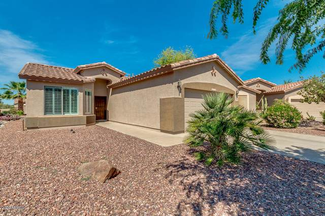 5116 S Verbena Court, Gilbert, AZ 85298 (MLS #6158953) :: Arizona Home Group