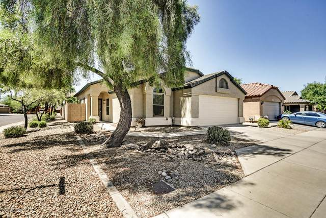 12319 W Solano Drive, Litchfield Park, AZ 85340 (MLS #6159002) :: NextView Home Professionals, Brokered by eXp Realty