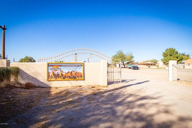 3224 W Carver Road, Laveen, AZ 85339 (MLS #6159015) :: The Riddle Group