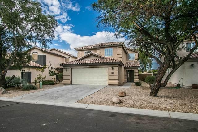 31548 N Cactus Drive, San Tan Valley, AZ 85143 (MLS #6159042) :: My Home Group
