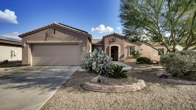 20533 N Sequoia Crest Drive, Surprise, AZ 85387 (MLS #6159059) :: Power Realty Group Model Home Center