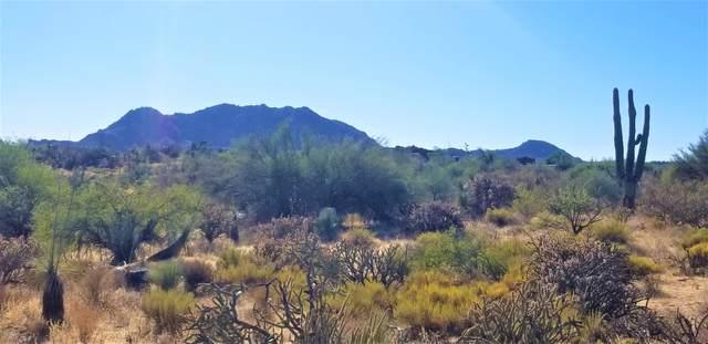 13810 E Villa Cassandra Drive, Scottsdale, AZ 85262 (MLS #6159075) :: The Helping Hands Team