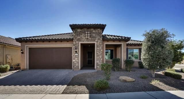 26811 W Piute Avenue, Buckeye, AZ 85396 (MLS #6159088) :: Long Realty West Valley