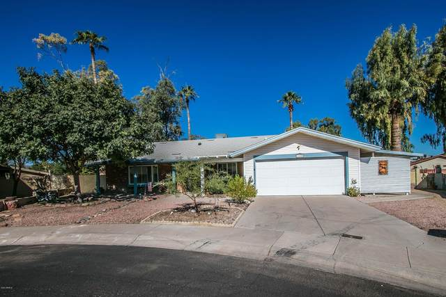 11608 S 51ST Street, Phoenix, AZ 85044 (MLS #6159106) :: The Copa Team | The Maricopa Real Estate Company
