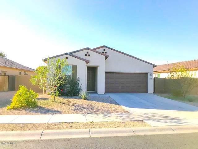 1116 N 168TH Drive, Goodyear, AZ 85338 (#6159159) :: Long Realty Company