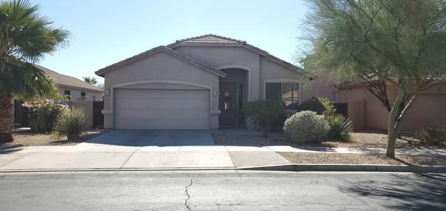 18127 W Desert Blossom Drive, Goodyear, AZ 85338 (MLS #6159187) :: Brett Tanner Home Selling Team