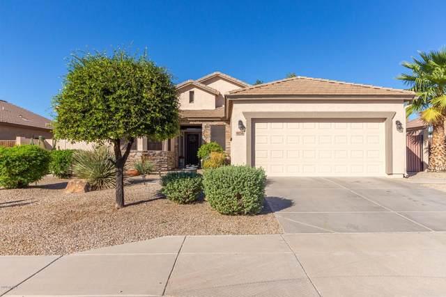 9136 E Hobart Street, Mesa, AZ 85207 (MLS #6159384) :: Lucido Agency