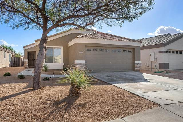 12009 W Caribbean Lane, El Mirage, AZ 85335 (MLS #6159398) :: TIBBS Realty