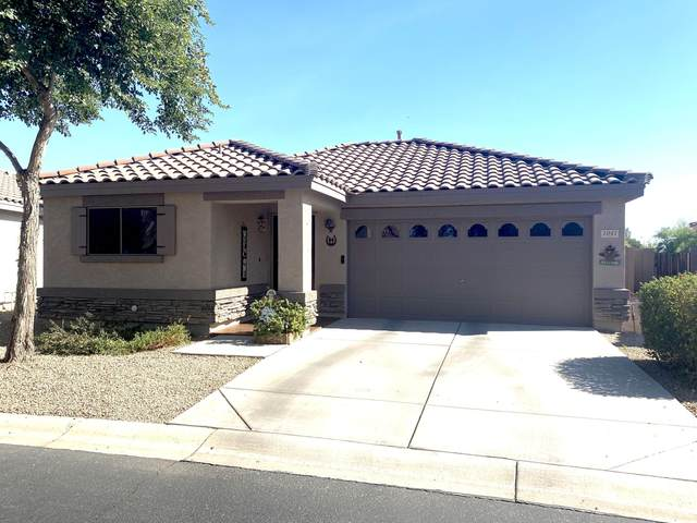 1041 S Anvil Place, Chandler, AZ 85286 (MLS #6159404) :: My Home Group