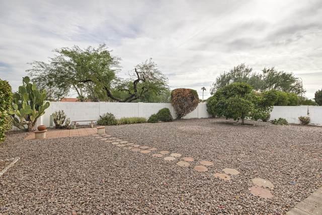 9509 E Fairway Boulevard, Sun Lakes, AZ 85248 (MLS #6159477) :: BVO Luxury Group