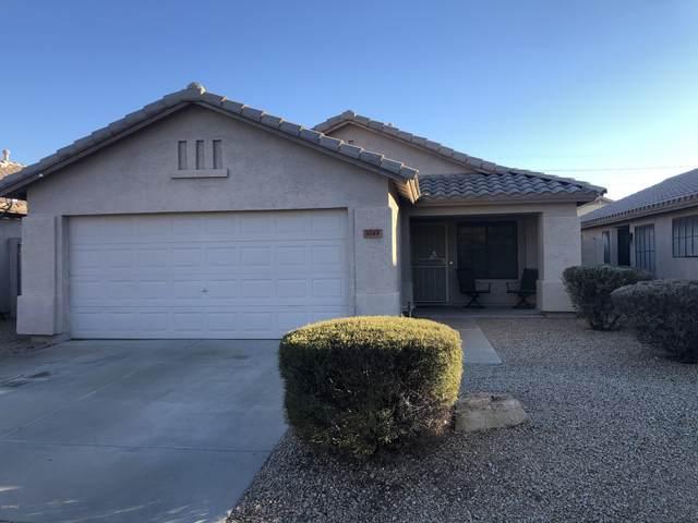 3243 E Hononegh Drive, Phoenix, AZ 85050 (MLS #6159481) :: Power Realty Group Model Home Center