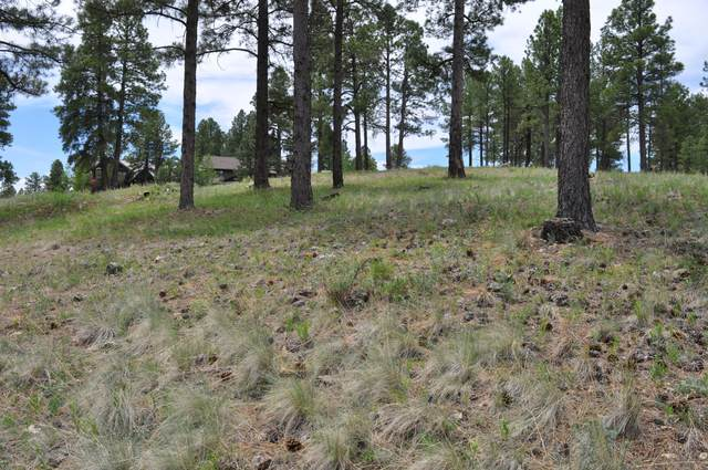 1615 E Morgan Run Drive, Flagstaff, AZ 86005 (MLS #6159589) :: The Daniel Montez Real Estate Group