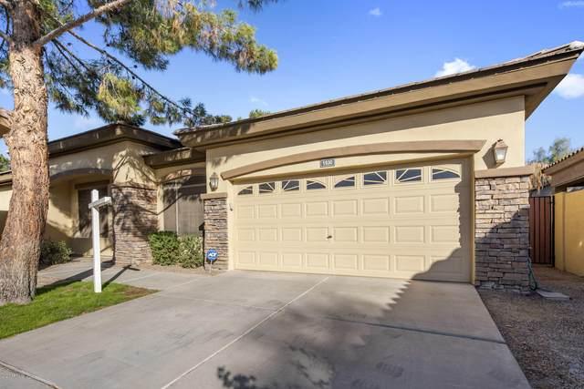 1930 W Olive Way, Chandler, AZ 85248 (MLS #6159716) :: Arizona Home Group
