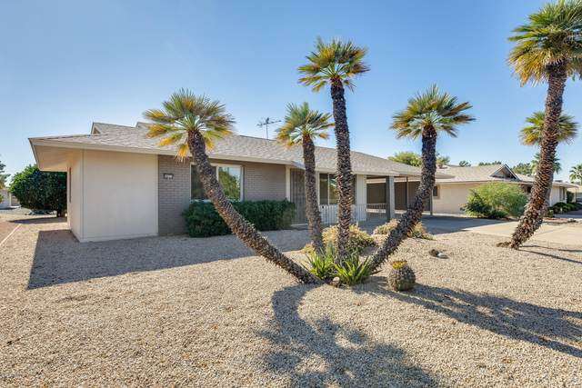 9723 W Spanish Moss Lane, Sun City, AZ 85373 (MLS #6159721) :: NextView Home Professionals, Brokered by eXp Realty