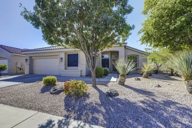 4301 E Swilling Road, Phoenix, AZ 85050 (MLS #6159729) :: Lifestyle Partners Team