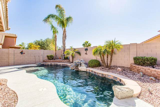 3627 W Santa Cruz Avenue, Queen Creek, AZ 85142 (MLS #6159815) :: The Daniel Montez Real Estate Group