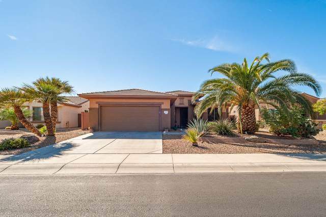 16287 W Kearney Lane, Surprise, AZ 85387 (MLS #6159829) :: BVO Luxury Group