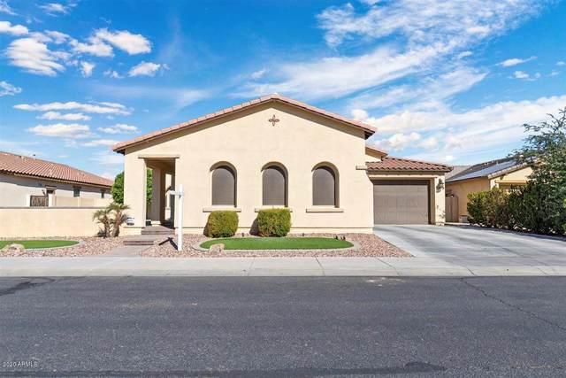 16164 W Holly Street, Goodyear, AZ 85395 (#6159863) :: Long Realty Company