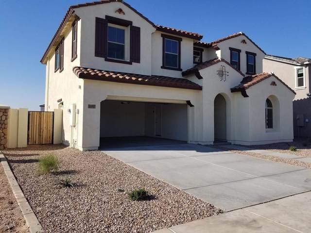 3342 N Los Alamos, Mesa, AZ 85213 (MLS #6159948) :: John Hogen | Realty ONE Group
