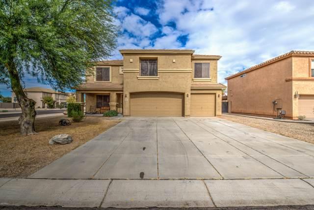 3056 E Bagdad Road, San Tan Valley, AZ 85143 (MLS #6160018) :: BVO Luxury Group