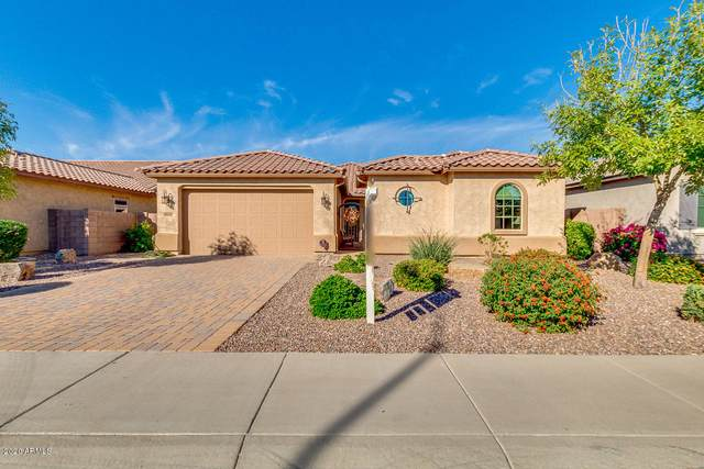 10838 E Queensborough Avenue, Mesa, AZ 85212 (MLS #6160091) :: The Daniel Montez Real Estate Group