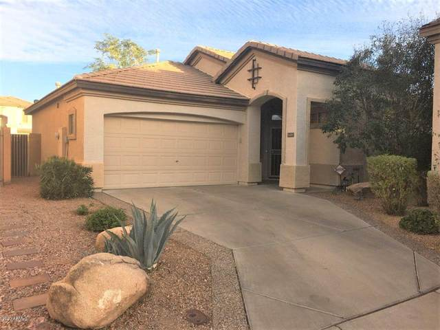 14287 W Cora Lane, Goodyear, AZ 85395 (MLS #6160115) :: BVO Luxury Group