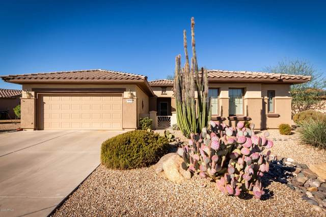 21264 N Red Hills Drive, Surprise, AZ 85387 (MLS #6160238) :: Long Realty West Valley