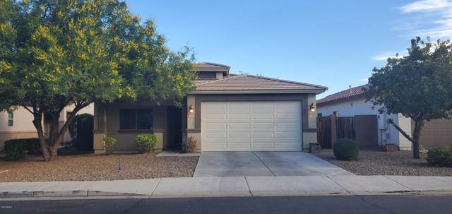 328 W Dragon Tree Avenue, San Tan Valley, AZ 85140 (MLS #6160257) :: Power Realty Group Model Home Center