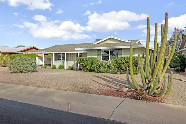 9940 W Hope Circle, Sun City, AZ 85351 (MLS #6160392) :: NextView Home Professionals, Brokered by eXp Realty