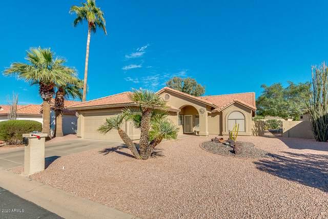 25625 S Flame Tree Drive, Sun Lakes, AZ 85248 (MLS #6160525) :: BVO Luxury Group