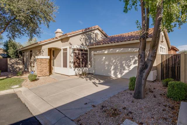 1958 E Browning Place, Chandler, AZ 85286 (MLS #6160595) :: Walters Realty Group