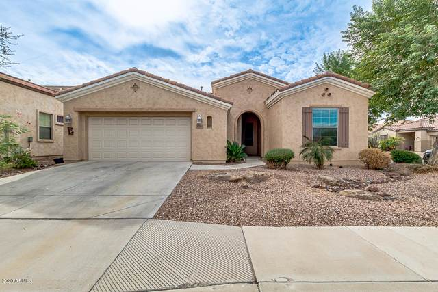 4041 E Donato Drive, Gilbert, AZ 85297 (MLS #6160597) :: Arizona Home Group