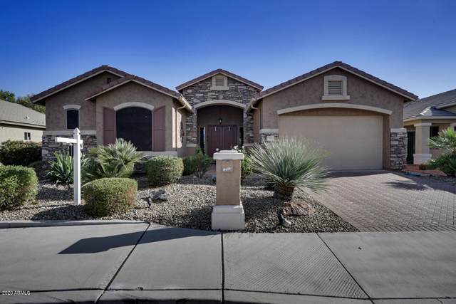 17031 N White Tank Vista, Surprise, AZ 85374 (MLS #6160598) :: Arizona Home Group