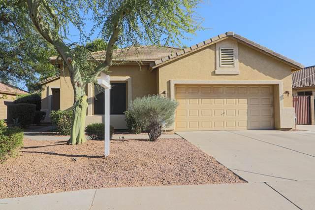 6195 S Opal Drive, Chandler, AZ 85249 (MLS #6160717) :: The Copa Team | The Maricopa Real Estate Company