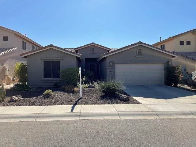 2107 W Blaylock Drive, Phoenix, AZ 85085 (MLS #6160881) :: Arizona 1 Real Estate Team