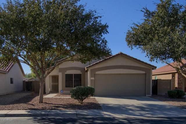 15775 W Crocus Drive, Surprise, AZ 85379 (MLS #6160886) :: Lifestyle Partners Team