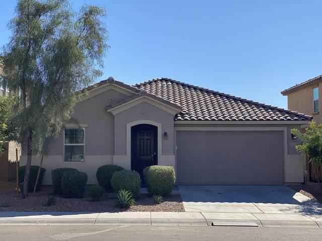 5123 E Hillview Street, Mesa, AZ 85205 (MLS #6160893) :: Brett Tanner Home Selling Team