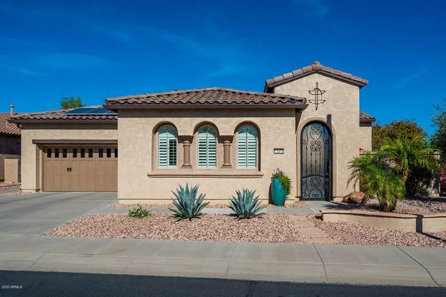 12532 W Fetlock Trail, Peoria, AZ 85383 (MLS #6160915) :: Midland Real Estate Alliance