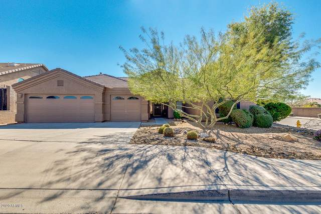 6349 W Prickly Pear Trail, Phoenix, AZ 85083 (MLS #6160940) :: The Laughton Team
