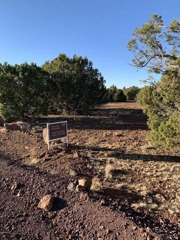 39 County Road 8055, Concho, AZ 85924 (MLS #6160965) :: The W Group
