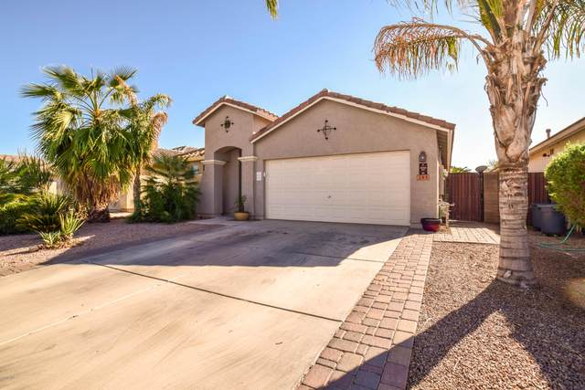 295 W Holstein Trail, San Tan Valley, AZ 85143 (MLS #6160971) :: Lucido Agency