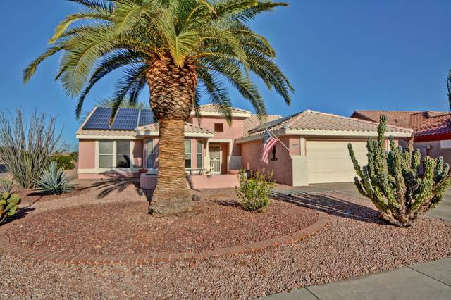 14026 W Via Tercero, Sun City West, AZ 85375 (MLS #6161060) :: Lifestyle Partners Team