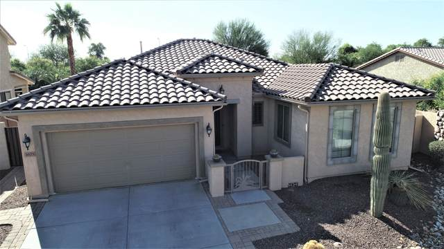 3675 E Bartlett Way, Chandler, AZ 85249 (MLS #6161073) :: Power Realty Group Model Home Center