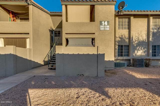533 W Guadalupe Road #1103, Mesa, AZ 85210 (MLS #6161087) :: Brett Tanner Home Selling Team