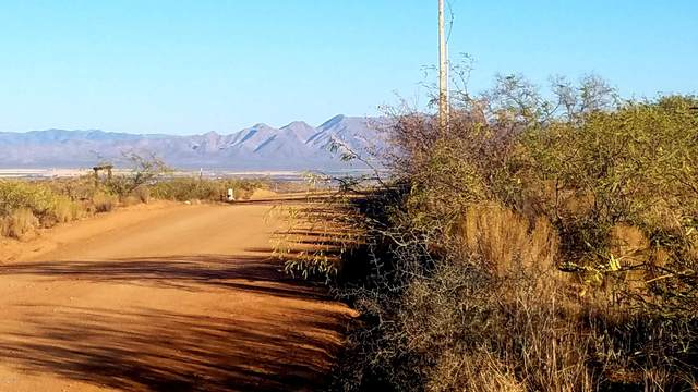 Lot 121 W Stetson Drive, Elfrida, AZ 85610 (MLS #6161104) :: The Laughton Team